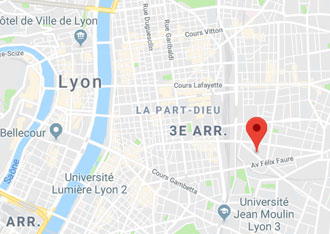 Access map to Annexx Part Dieu